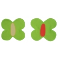 Magnet Louka - motýlek zelený