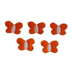 Motýlci oranžoví